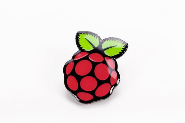 Raspberry Pi PIN